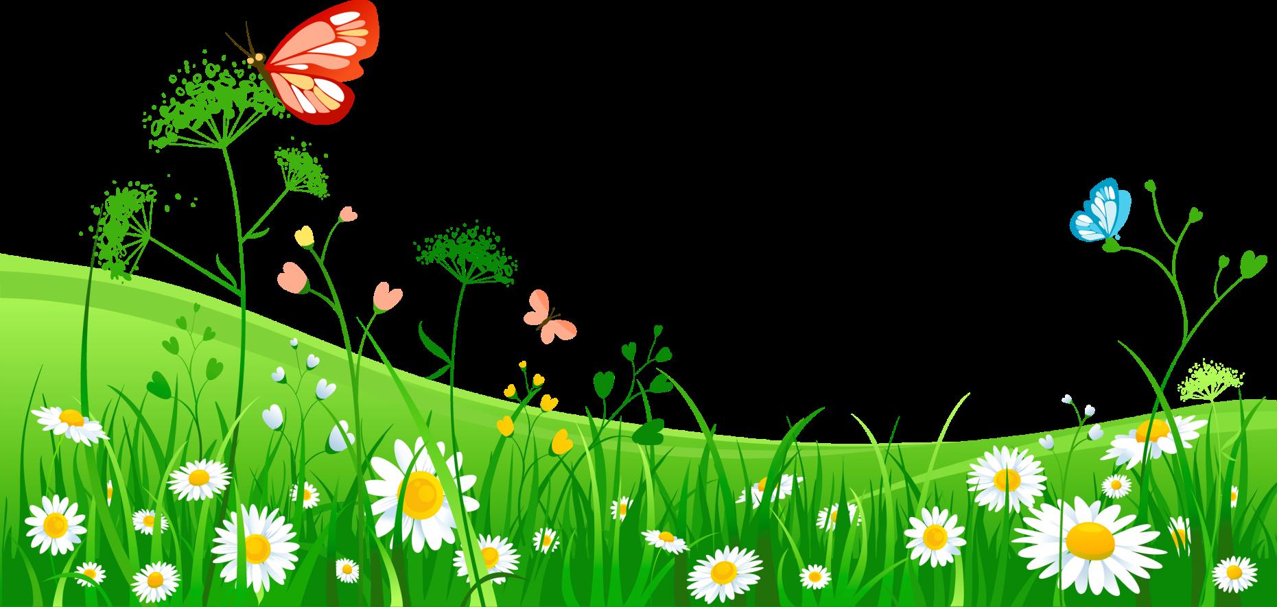 основном картинки рисовать к теме весна и ромашки этот метод более